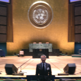 Ezio Lattanzio - Speaking before the UN, 2012